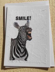 Mit Zebra 10,4X14,6 ( C6 ) Mit Couvert Innenblatt Fr. 6.00